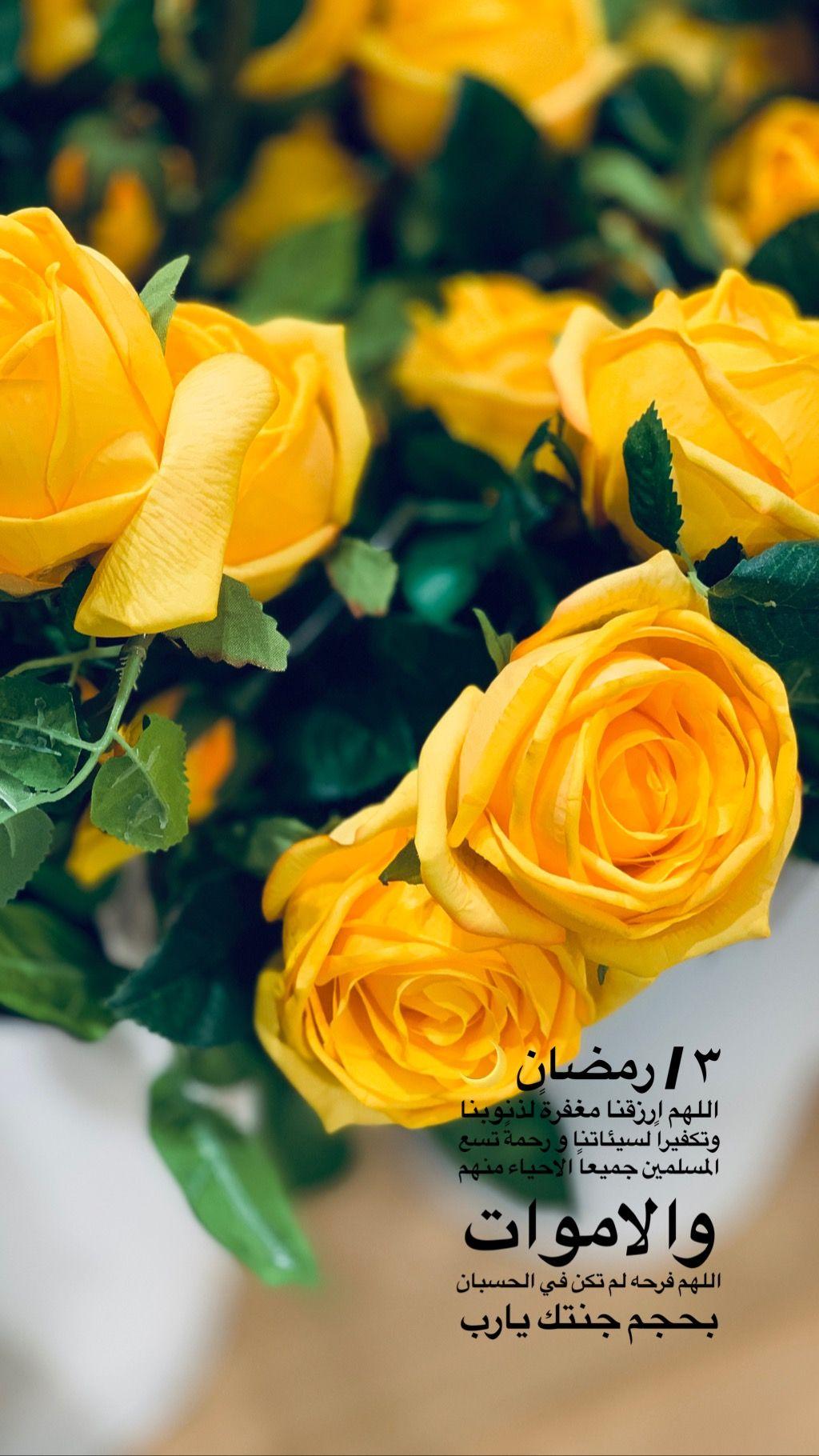 ٣ رمضان اللهم ارزقنا مغفرة لذنوبنا وتكفيرا لسيئاتنا و رحمة تسع المسلمين جميعا الاحياء منهم والاموات اللهم فرحه لم تكن في Flowers Ramadan Plants