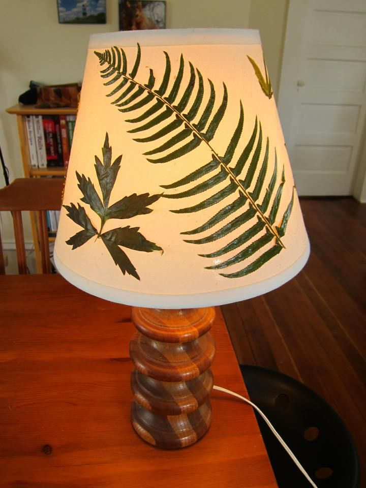 Lamp Shades Near Me Gorgeous Reminds Me Of My Grandma's Butterfly Shower Doors And Butterfly Lamp Inspiration