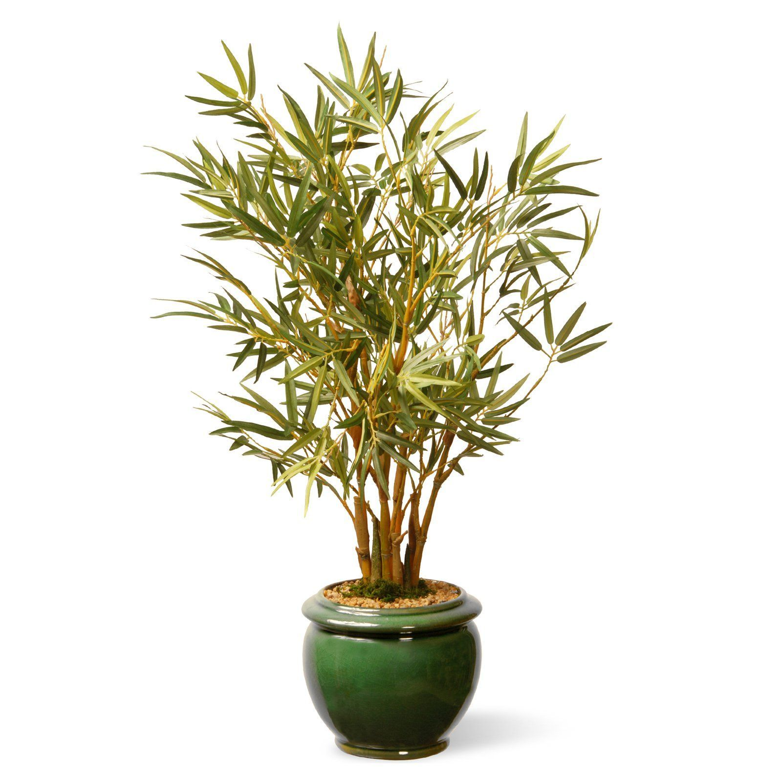 National Tree Company Garden Accents Bamboo Floor Silk Plant