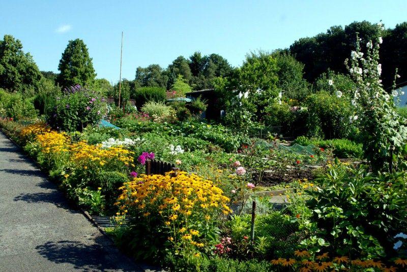 Kleingarten Kleiner Garten Garten Umwelt