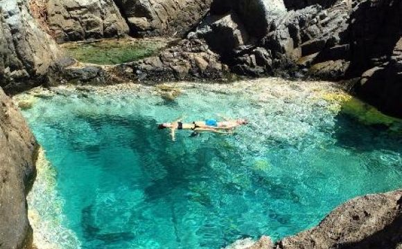 Piscine naturelle de petit cul de sac saint barth lemy for Piscine naturelle prix