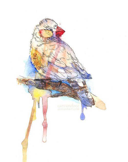 watercolor   Tumblr