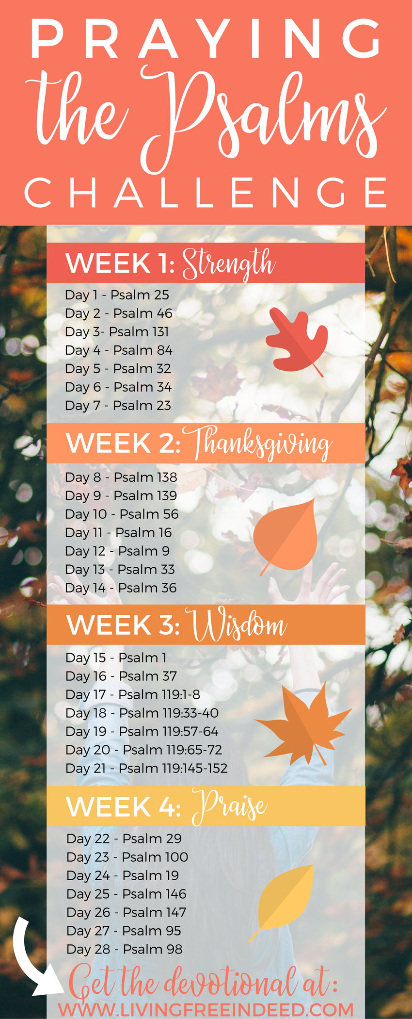 Want to deepen your prayer life? Study the Psalms this season with this new devotional that highlights their nuggets of wisdom and encouragement. Grow in understanding on how to seek the Lord daily as you read the words of God's own prayer book.   Praying the Psalms   How to Pray   Psalms of Prayer   Learn from the Psalms   Psalms Bible Study   Psalms of Thanksgiving   Psalms of Praise   Psalms for Strength