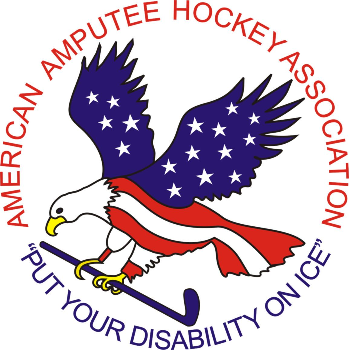 American Amputee Hockey Association Youth sports