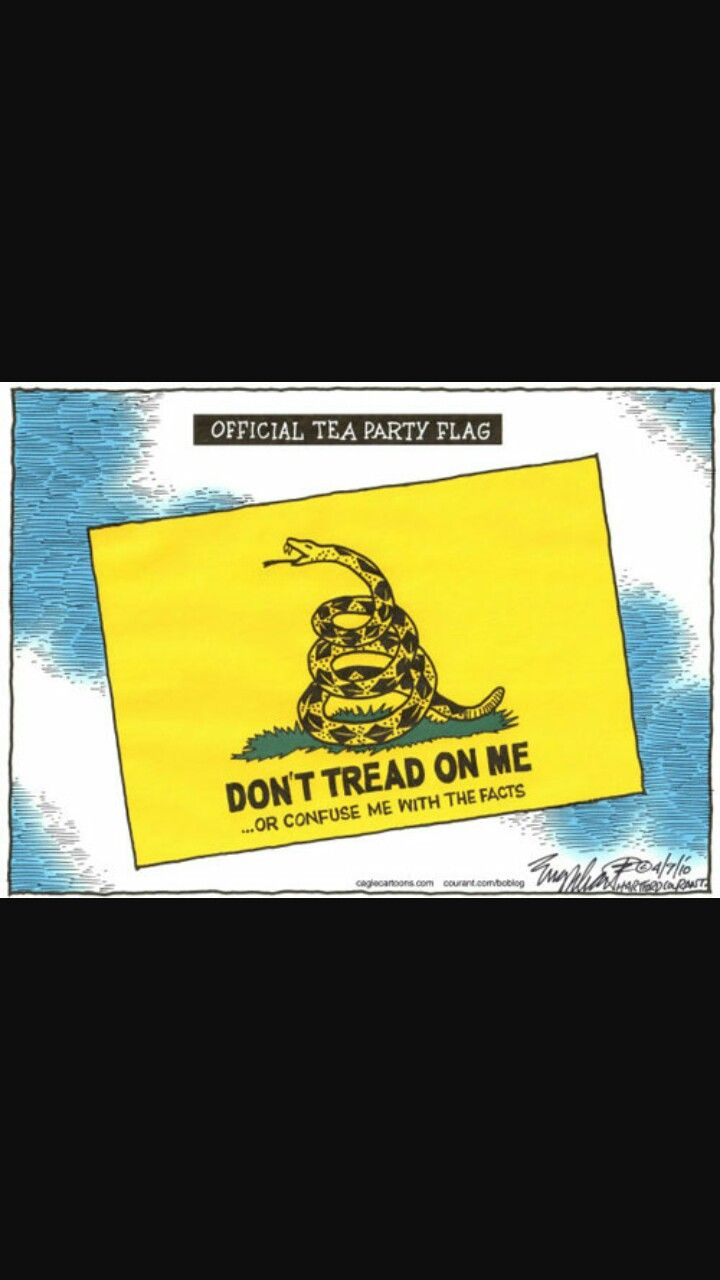 Pin By On Snake Flag Tea Party Flag Party Flags Dont Tread On Me