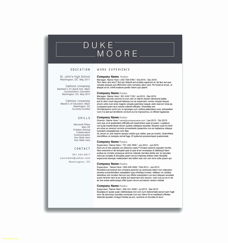 Musician Resume Template Best Of Game Artist Resume Modern