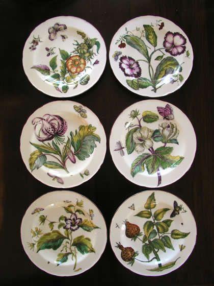 botanical dinnerware - Google Search & botanical dinnerware - Google Search | Dominican House | Pinterest ...