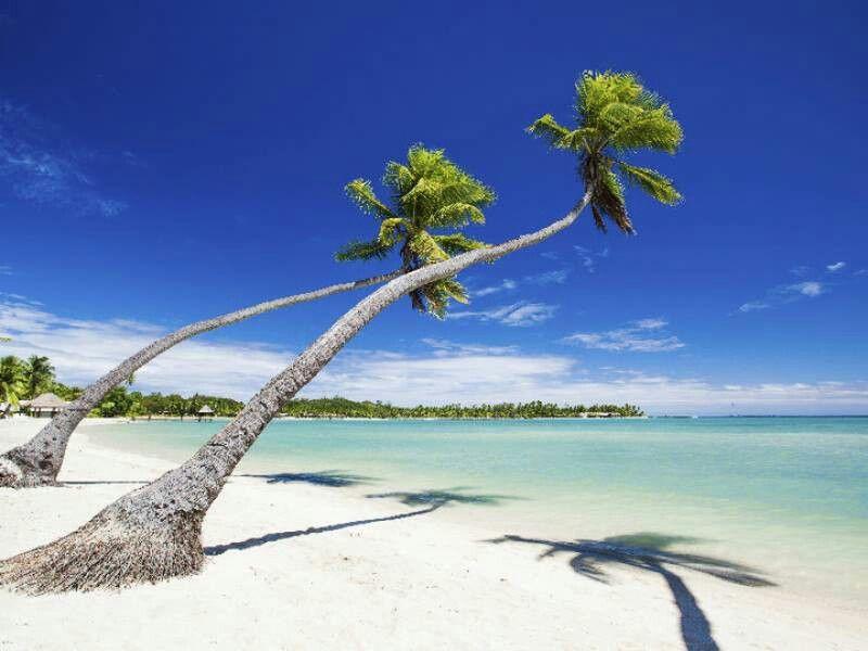 Fidži online dating sitetuotteen dating tosiasiat