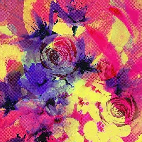 #BLACKFRIDAY » 20% OFF » USE CODE: FRIDAY2016 » Red Blossom #swimwear #sportswear #yoga #yogagear #yogapants #apparel #textiledesign #fashion #fabricdesign #patternbank #pattern #stylerunner #surfwear #floral #activewear #fitnessfashion #resortwear #patternbankdesigner #blossom #printstudio #textiledesigner #newonpatternbank IG: @beccy_bland