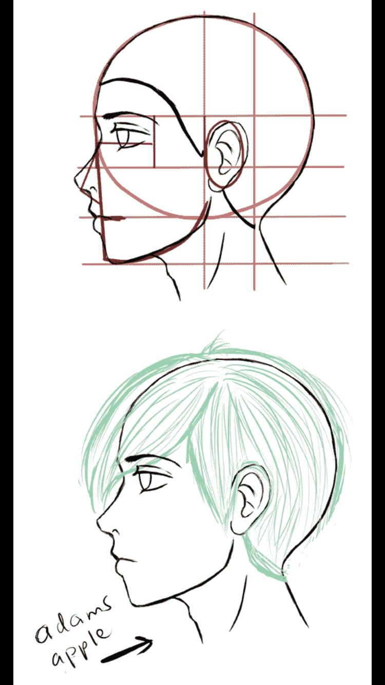 Male Manga Head Side View Side Face Drawing Drawing Tutorial Face Face Side View Drawing