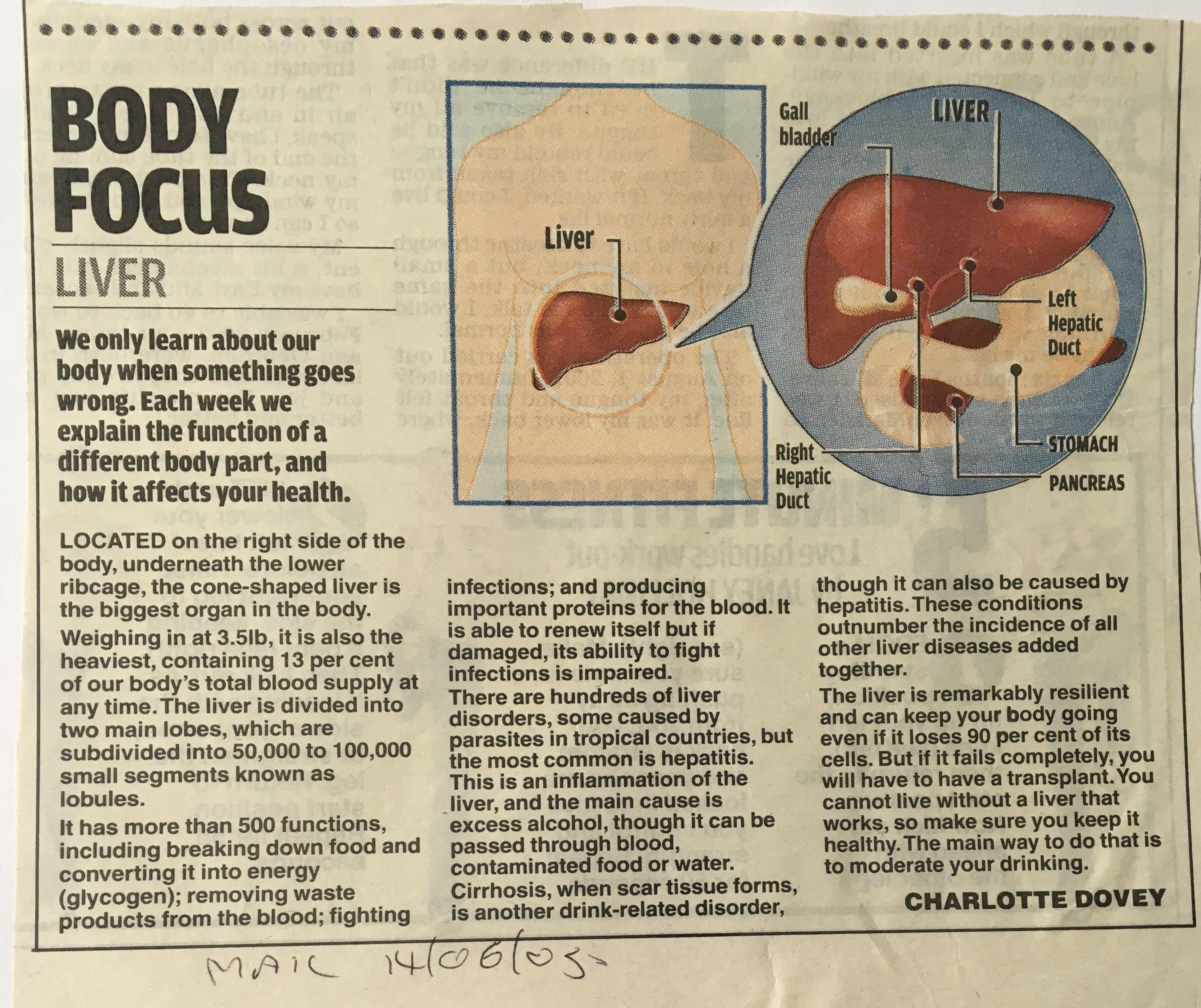 Image by Alan Crooks on Anatomy Bladder, Body, Learning