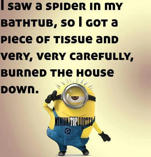 Shared by Minion Fans on FB