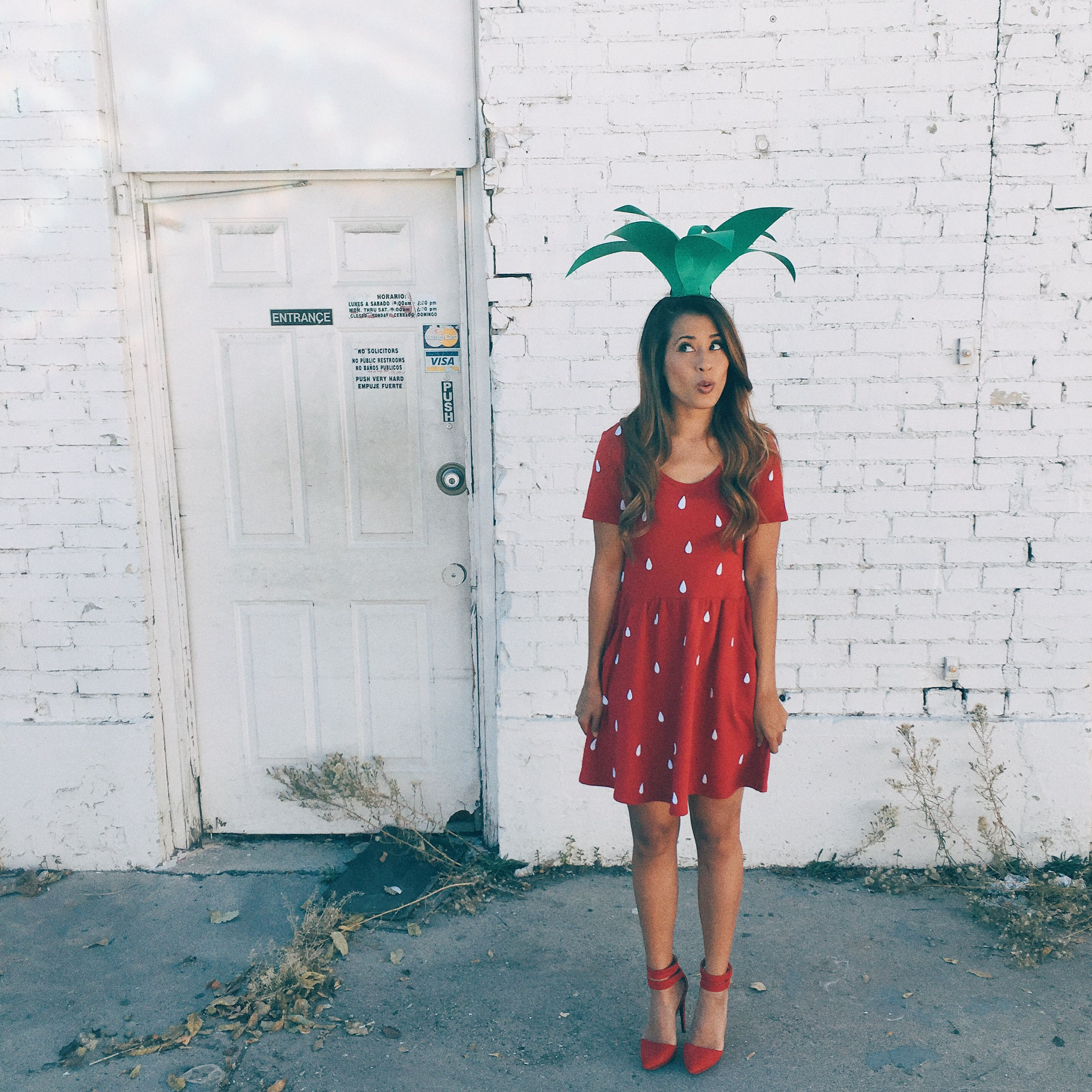 strawberry halloween costume auteur ariel blog youtube pinterest halloween kost m. Black Bedroom Furniture Sets. Home Design Ideas