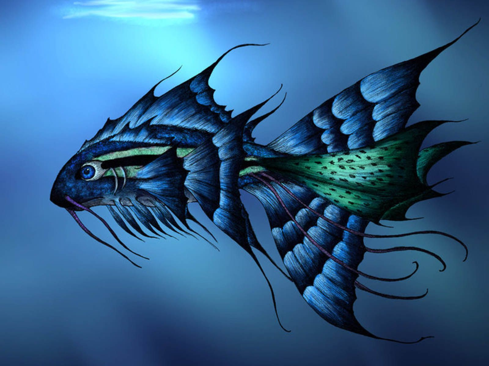 Artistic fish animal why not blue pinterest artistic fish animal wallpaper backgroundsanimal voltagebd Image collections