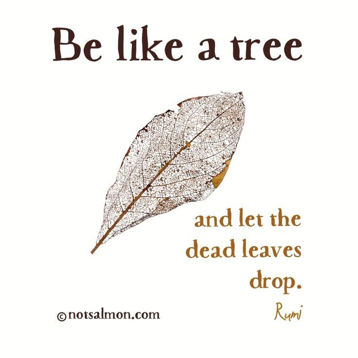 Be Like A Tree... Tree Of Life ...