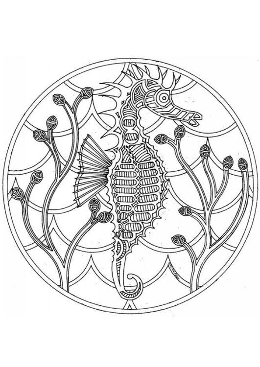 Coloring page sea horse mandala - img 4544 Mandala