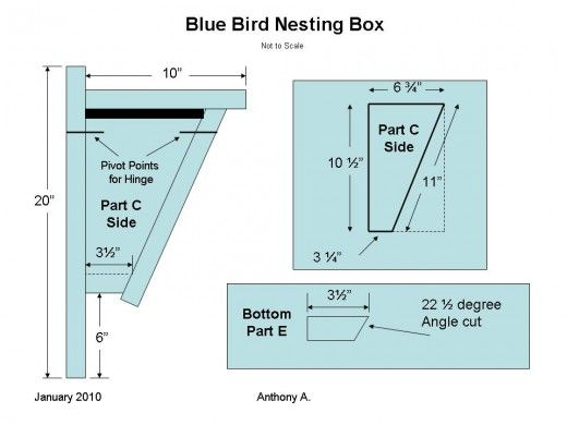 bluebird nest box plans: how to build a peterson bluebird house