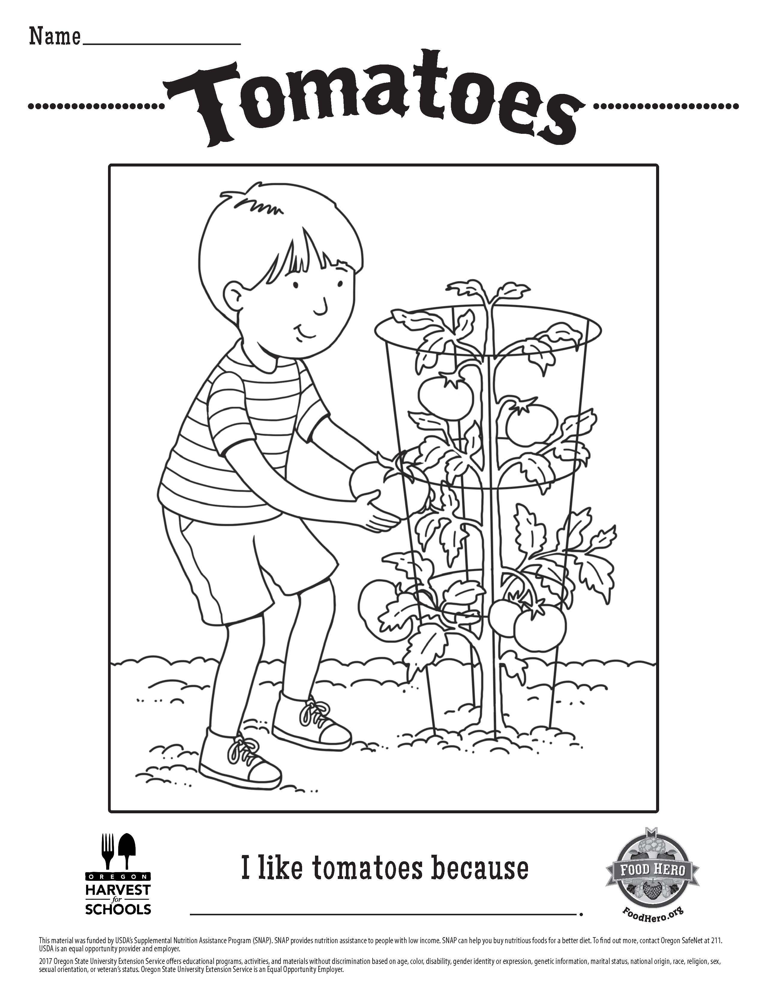 Tomatoes Free Printable Children\'s Coloring Sheet Food Hero ...