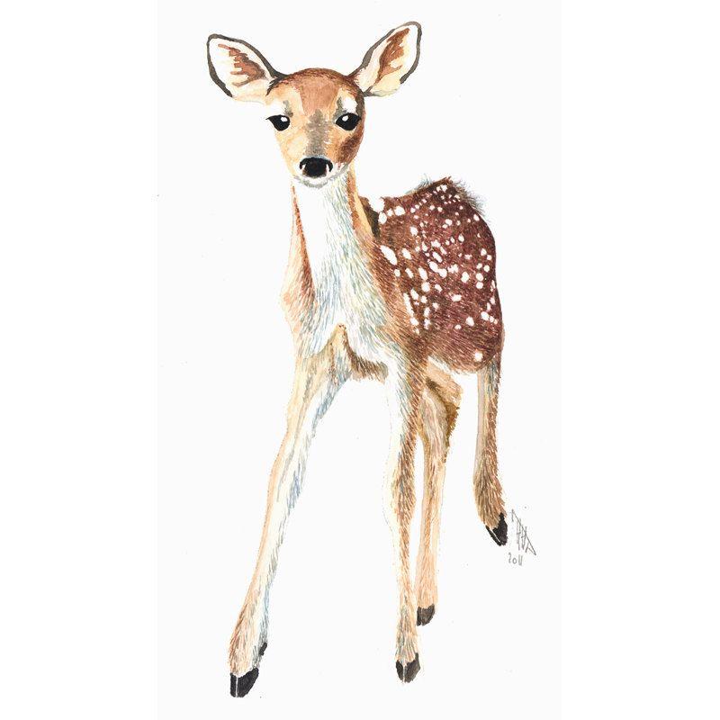 Fawn Wildlife Illustration Print Original