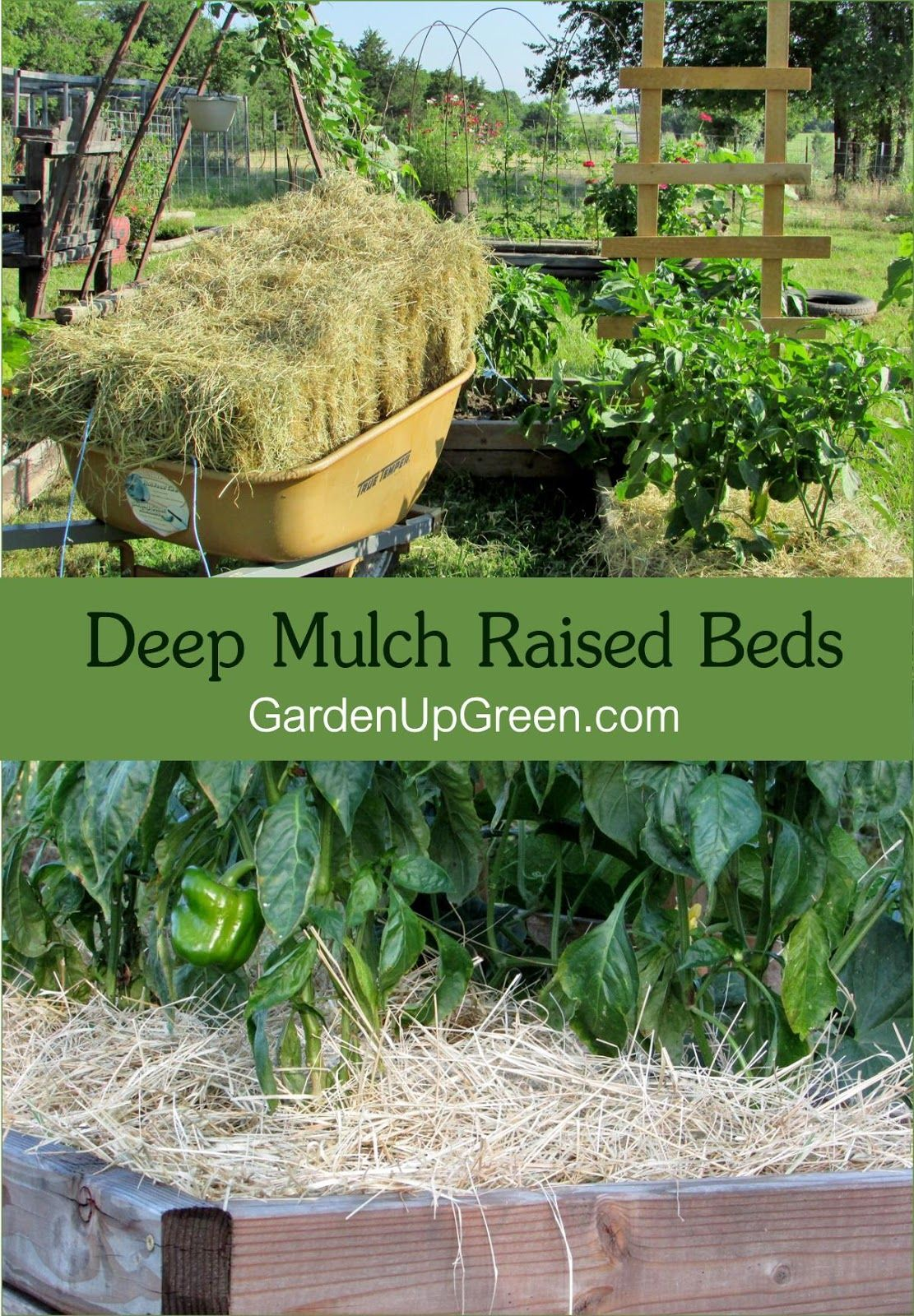 Learn How To Deep Mulch With Hay For Your Raised Beds