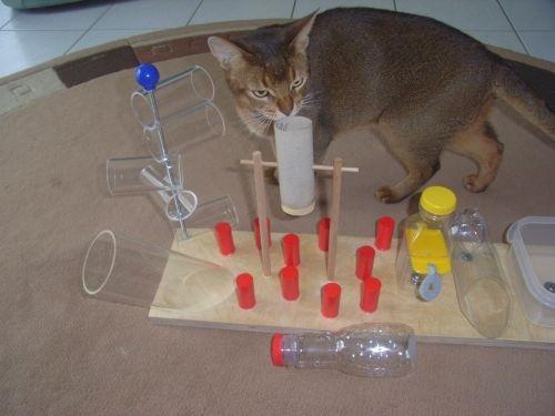 do it yourself katzenfummelbrett selber bauen katzen katzenspielzeug und katzen zubeh r. Black Bedroom Furniture Sets. Home Design Ideas