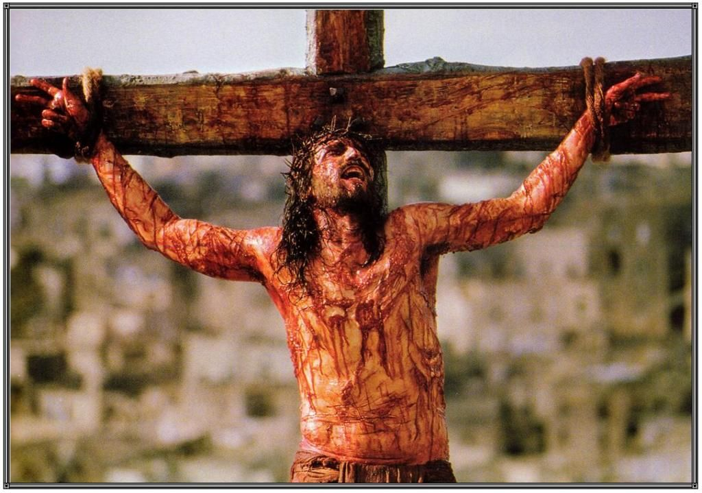 Passion of the Christ Jesus crucified on the Cross | Jesus on the cross, Jesus  crucified, Jesus