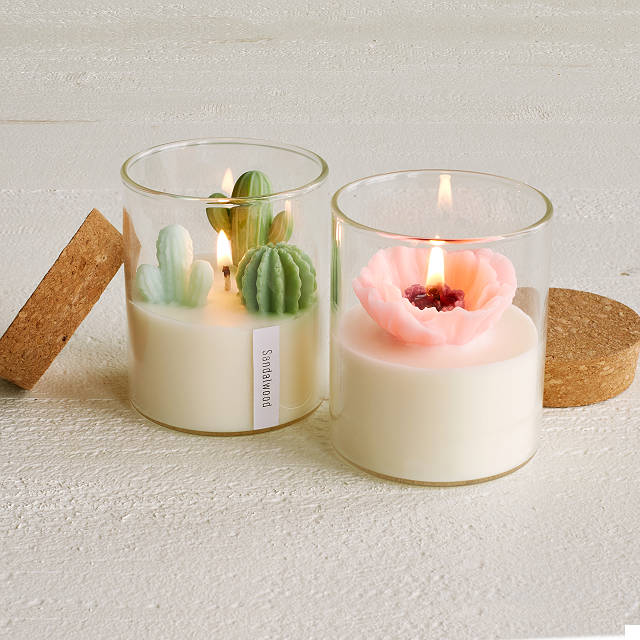 Terrarium Candle | Cactus Candles, Flower Candles