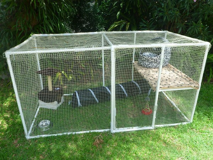 Build your own cat enclosure from PVC pipes and connectors