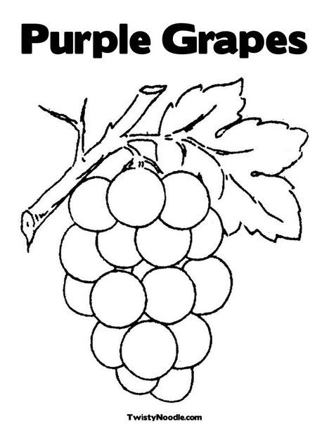 Purple Grapes Coloring Page From TwistyNoodle