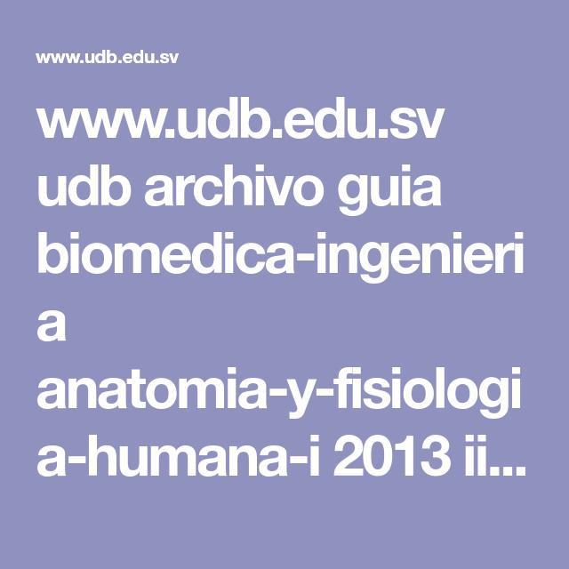 www.udb.edu.sv udb archivo guia biomedica-ingenieria anatomia-y ...