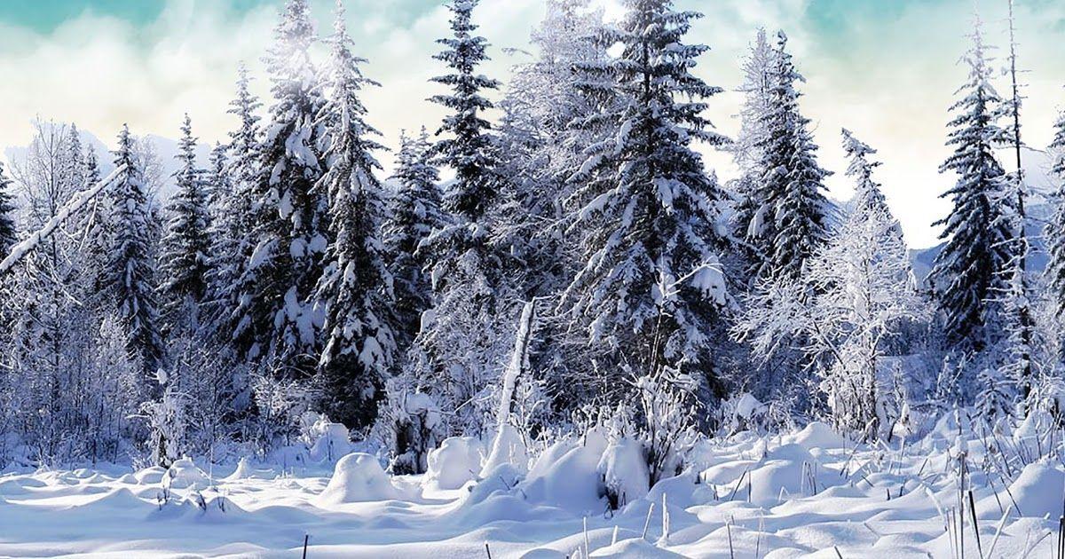 Hintergrundbilder Kostenlos Winter Jahreszeiten Kostenlose Hintergrundbilder W 3dhint In 2020 Winter Wallpaper Christmas Wallpaper Christmas Wallpaper Free