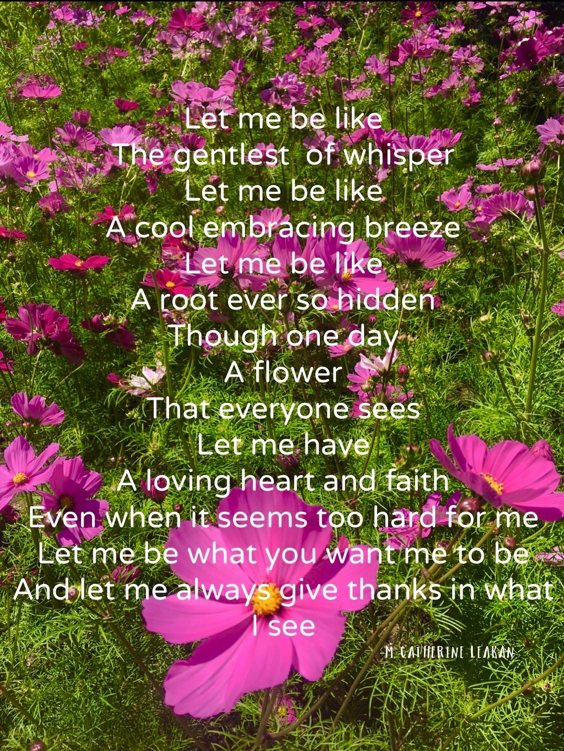 Letitbe Spiritual Poetry For Sunday Peace