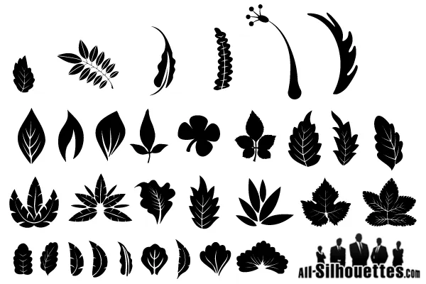 Free Graphics Vector Leaf Silhouette Leaf Silhouette Leaves Vector Free Graphics