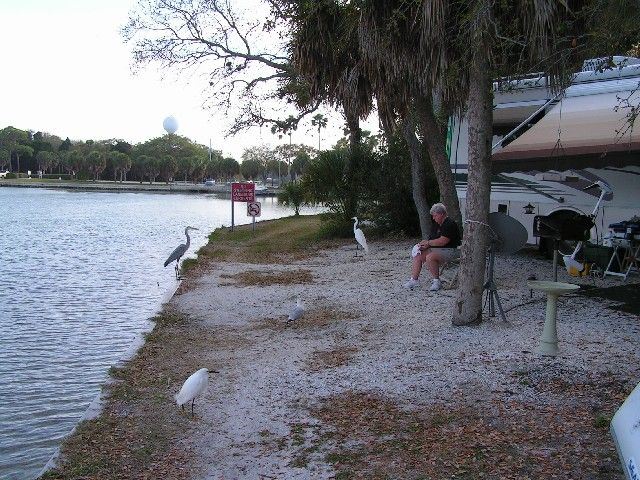 Fort Desoto is also a great place for camping either in a tent or RV. Be sure to make reservations because this place is filled up months in advance.