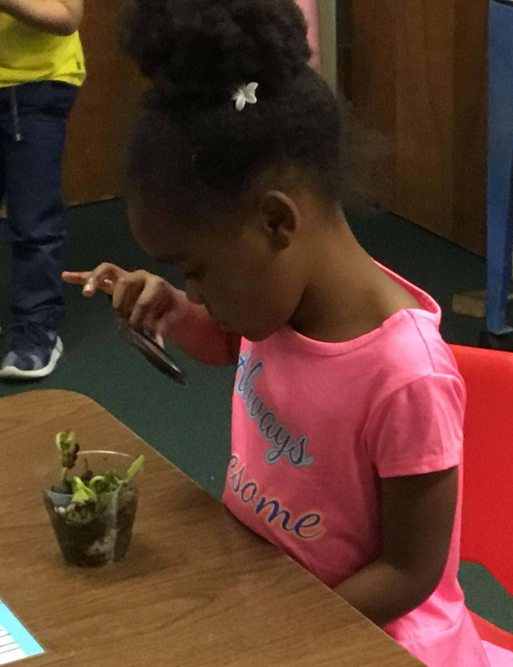 Pin By Meadow Oaks Academy Preschool On Stem