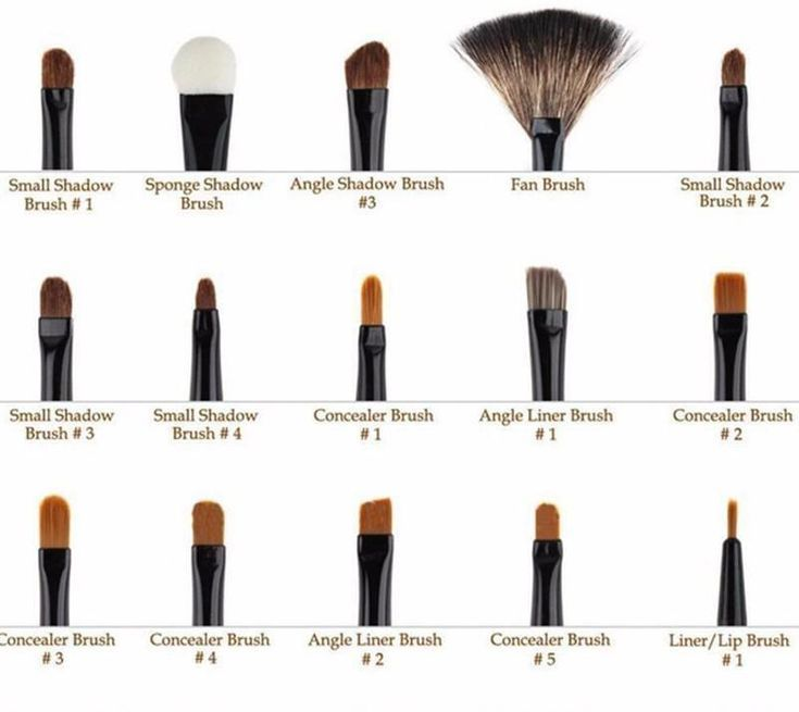 Photo of Professional Makeup Brushes Guide! The  best makeup brush list for beginners. Ge…