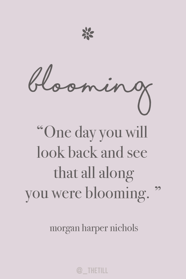 Image result for one day you will look back and see that all along you were blooming