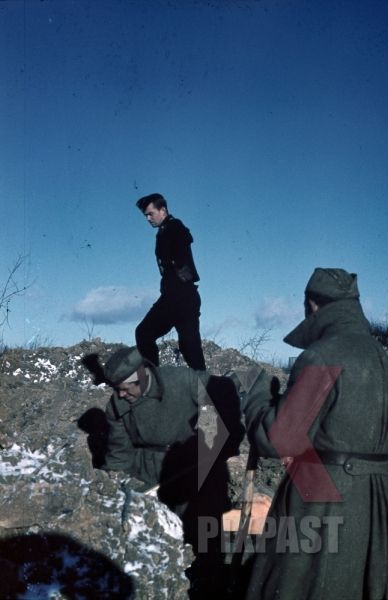 WW II   German   Photo  **    Officers  In The Snow **