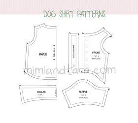 Modelagem para cães