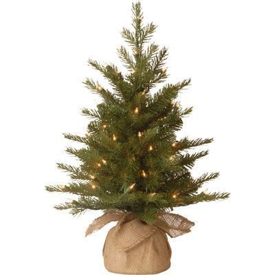 The Holiday Aisle Nordic Pre-Lit Feel Real Spruce Small Tree
