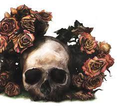 skull watercolor - Google Search