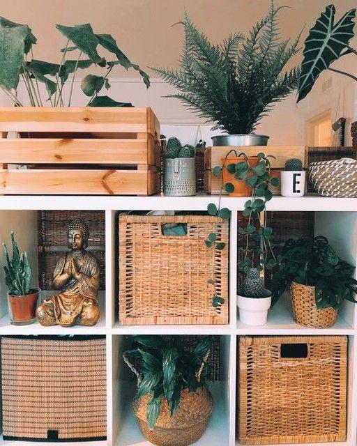 FRIDFULL water hyacinth, Plant pot - IKEA