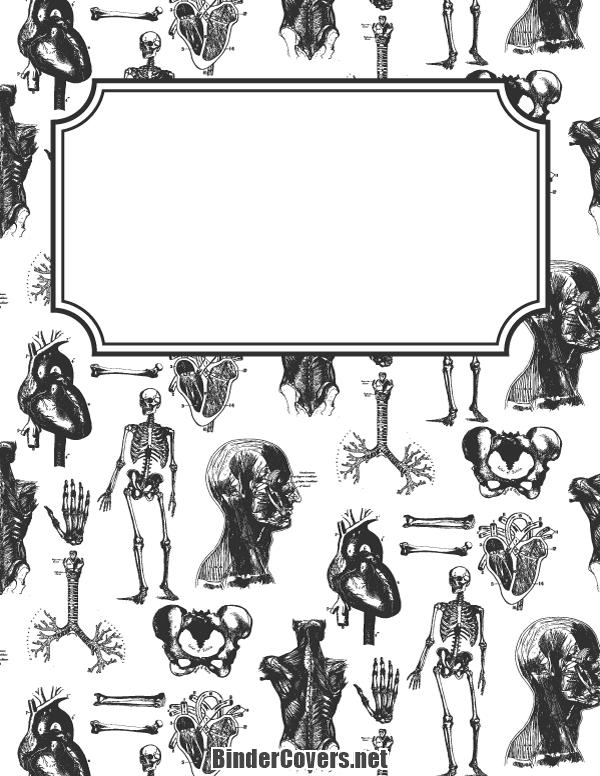 Anatomy Binder Cover Binder covers printable, Binder