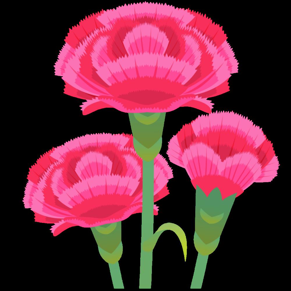 商用フリー 無料イラスト 5月母の日 カーネーションの花 Mothersday013 商用ok フリー素材集 ナイスなイラスト カーネーション 母の日 母の日 イラスト 無料 イラスト
