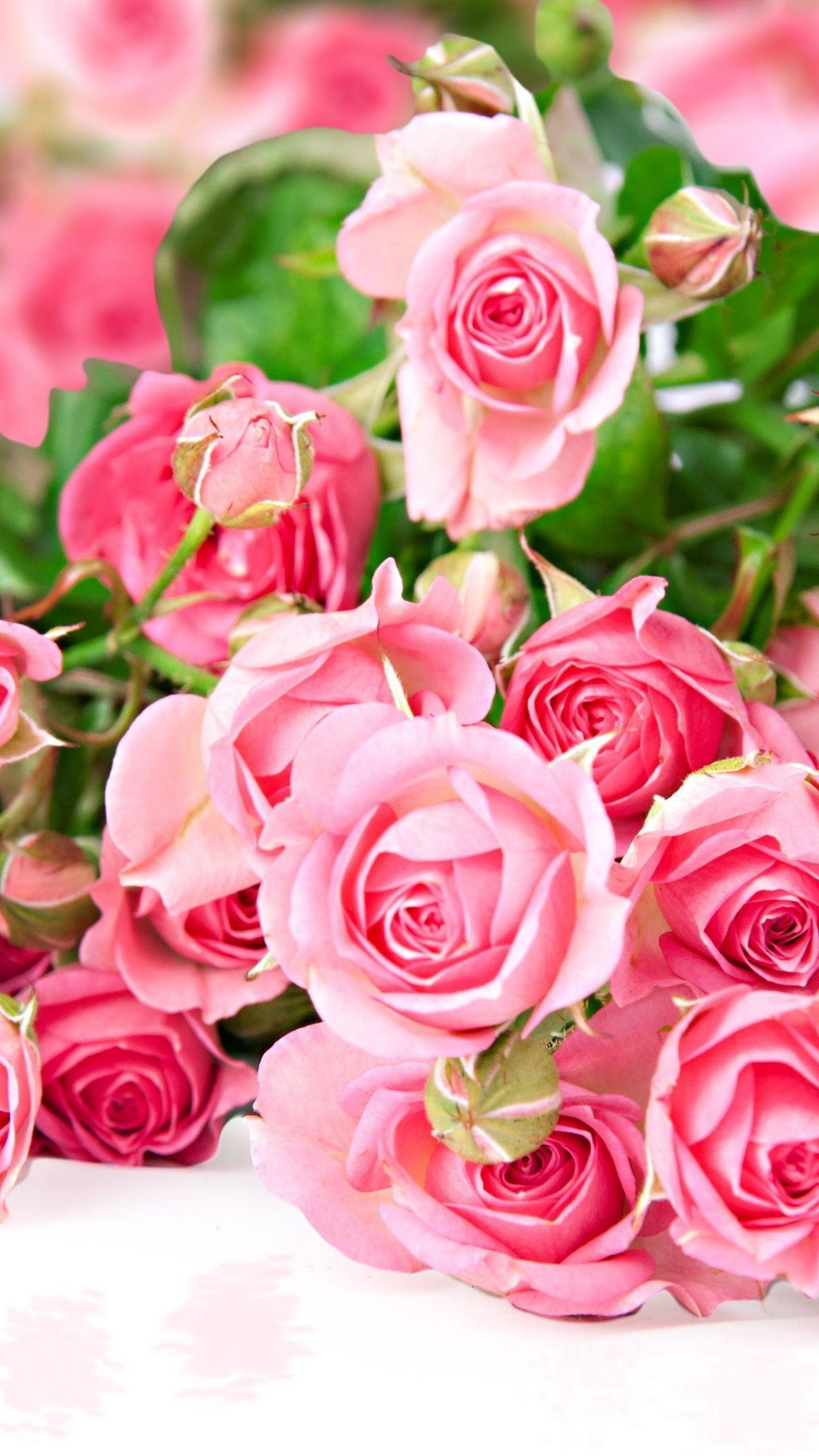 See my collection of lovely iPhone and android rose