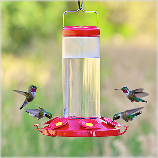 bee proof hummingbird feeders