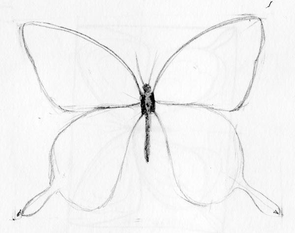Easy to Draw Butterfli...