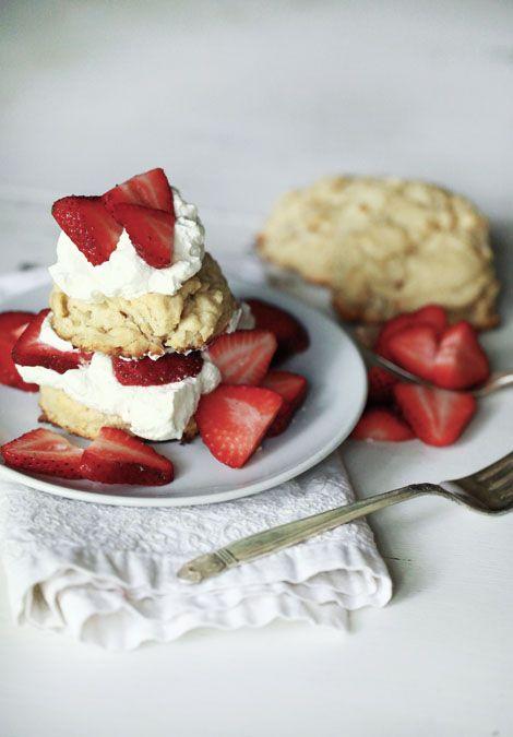 shortcake aka mr. beard's cream biscuits by jen altman