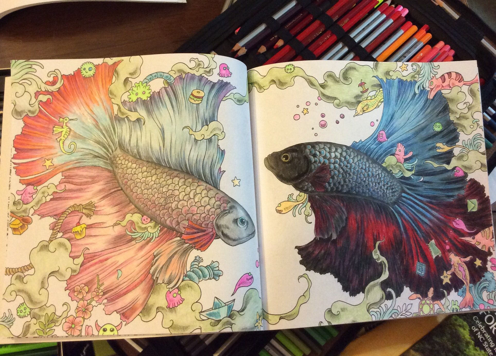 From Animorphia Coloring Book Mix Of Different Brands Colored Pencils Coloring Book Art Animorphia Coloring Book Color Pencil Art