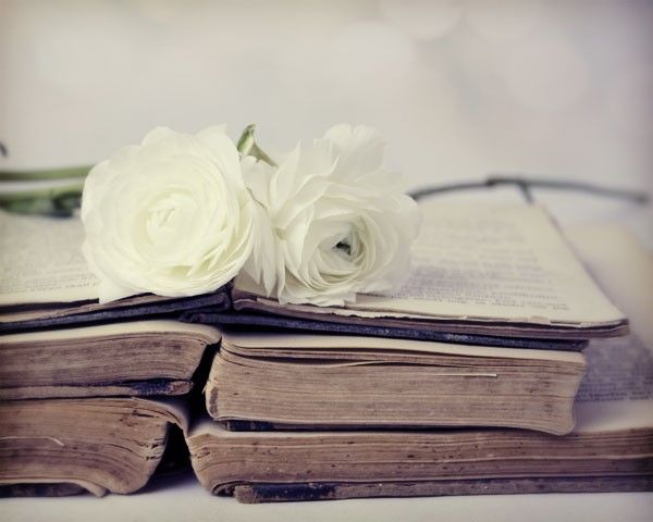 ranunculus on antique books. YES